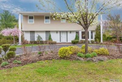 Dix Hills Single Family Home For Sale: 11 Ormond St