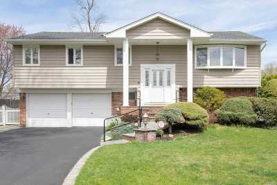 Commack Single Family Home For Sale: 43 Florida Ave