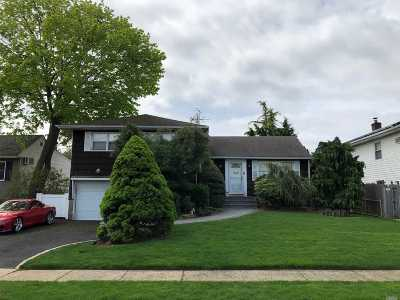 Seaford Single Family Home For Sale: 4030 Bernice Rd