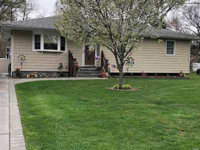 Mastic Single Family Home For Sale: 45 Applegate Dr