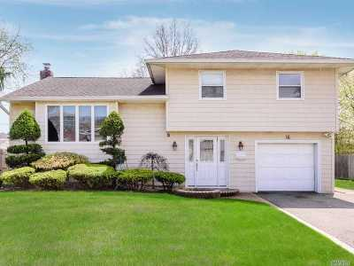 Plainview Single Family Home For Sale: 16 Dartmouth Dr