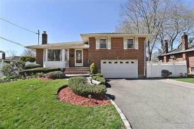 Syosset Single Family Home For Sale: 240 Martin Dr