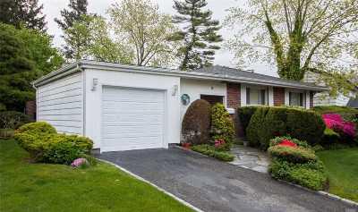 Plainview Single Family Home For Sale: 8 Toni Pl