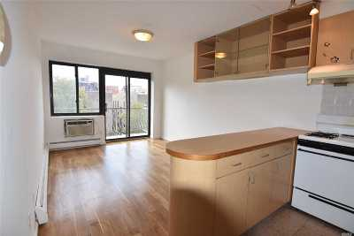 Flushing Condo/Townhouse For Sale: 144-48 Roosevelt Ave #6C