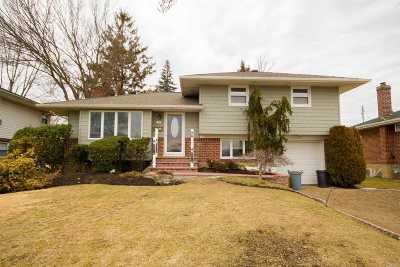 Plainview Single Family Home For Sale: 43 Spector Ln
