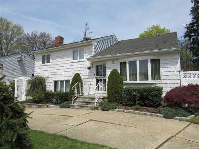 Massapequa Single Family Home For Sale: 327 N Virginia Ave