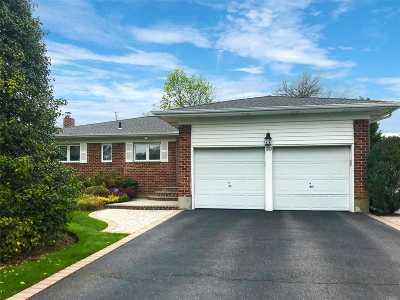 Jericho Single Family Home For Sale: 20 Orange Dr