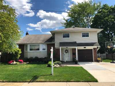 Massapequa Single Family Home For Sale: 296 N Wyoming Ave