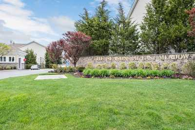 East Meadow Condo/Townhouse For Sale: 167 Spring Dr