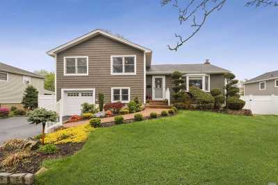 Bethpage Single Family Home For Sale: 78 Silber Ave