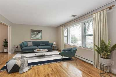 Manhasset Single Family Home For Sale: 222 Bayview Ave