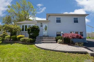 N. Massapequa Single Family Home For Sale: 288 N Michigan Ave