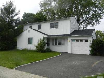 Farmingdale Single Family Home For Sale: 117 Washington St
