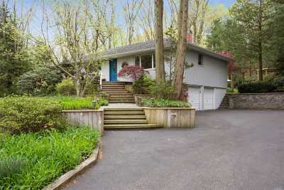 Dix Hills Single Family Home For Sale: 58 Kendrick Ln
