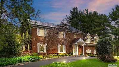 Dix Hills Single Family Home For Sale: 10 Rustic Gate Ln