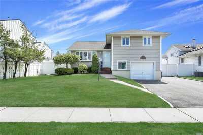 Jericho Single Family Home For Sale: 61 Elmtree Lane