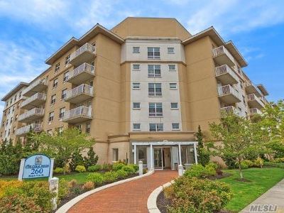 Queens County Condo/Townhouse For Sale: 260 Beach 81st St #5M