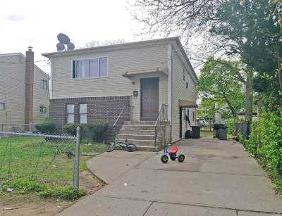 Westbury Single Family Home For Sale: 201 Wright St