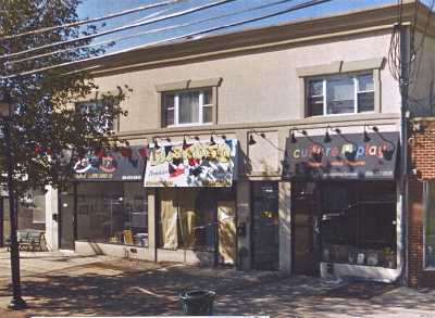 Commercial For Sale: 220-226 East Meadow Ave
