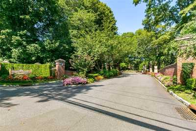 Roslyn Condo/Townhouse For Sale: 68 Short Way