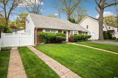 Wantagh Single Family Home For Sale: 3641 Demott Ave