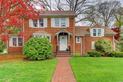 Wantagh Single Family Home For Sale: 3141 Hickory St
