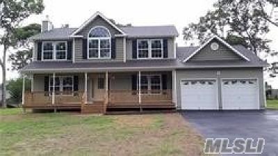 Centereach Single Family Home For Sale: 61 Ozark St