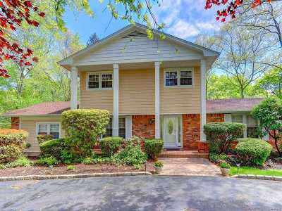 Dix Hills Single Family Home For Sale: 7 Blossom St