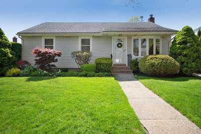 Seaford Single Family Home For Sale: 1310 Ralph Street E