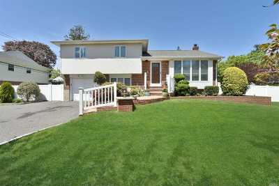 Syosset Single Family Home For Sale: 2 Loretta Dr