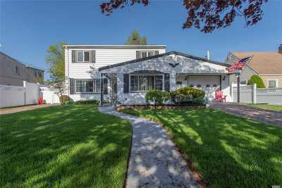 Levittown Single Family Home For Sale: 13 Swan Ln