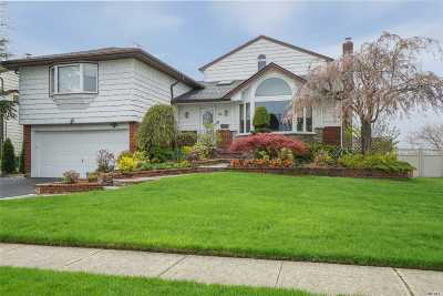 Massapequa Single Family Home For Sale: 66 Lakeshore Blvd
