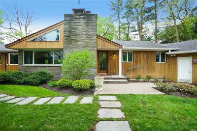 Syosset Single Family Home For Sale: 164 Cold Spring Rd