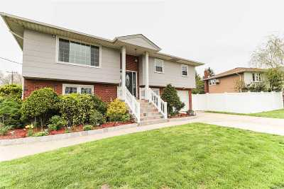 Valley Stream Single Family Home For Sale: 1100 Frances Dr