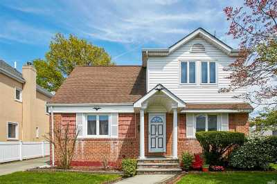 Williston Park Single Family Home For Sale: 187 Cushing Ave