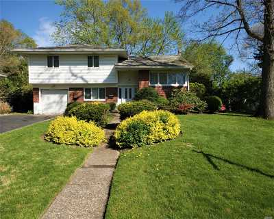 Commack Single Family Home For Sale: 6 Wyoming St
