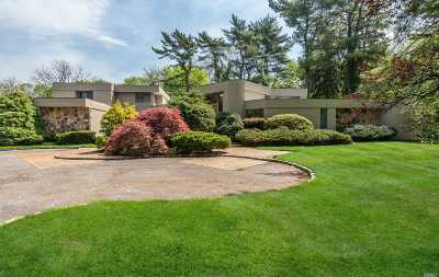Old Westbury Single Family Home For Sale: 18 Sandpiper Ct