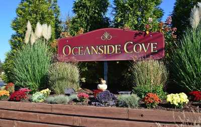 Oceanside NY Rental For Rent: $3,200