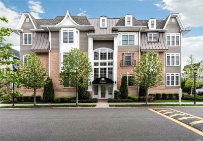 Westbury Condo/Townhouse For Sale: 88 Shady Ln
