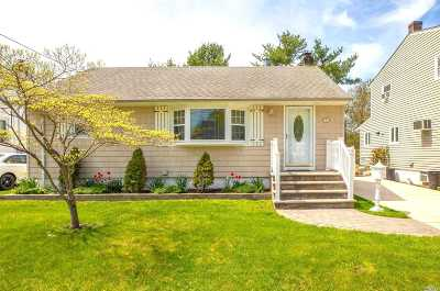 Hicksville Single Family Home For Sale: 25 Kuhl Ave