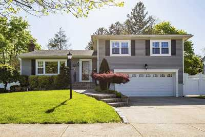 Plainview Single Family Home For Sale: 27 Audley Cir