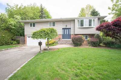 Syosset Single Family Home For Sale: 20 East St