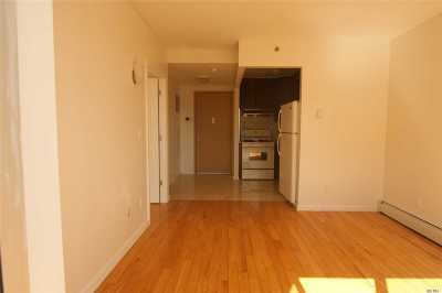 Flushing Condo/Townhouse For Sale: 136-21 Latimer #6
