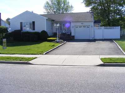 Hicksville Single Family Home For Sale: 45 Vassar Ln