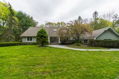 Syosset Single Family Home For Sale: 450 Annandale Dr