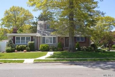 Seaford Single Family Home For Sale: 1480 Roth Rd