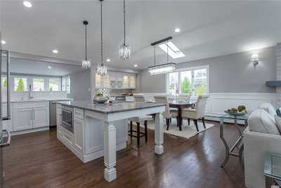 Massapequa Single Family Home For Sale: 333 S Riviera Dr