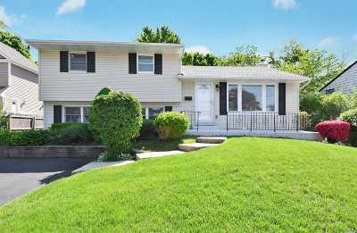Jericho Single Family Home For Sale: 9 Deer Ln