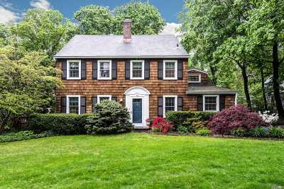 Port Washington Single Family Home For Sale: 5 Longview Rd
