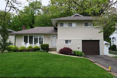 East Meadow Single Family Home For Sale: 568 Richmond Rd